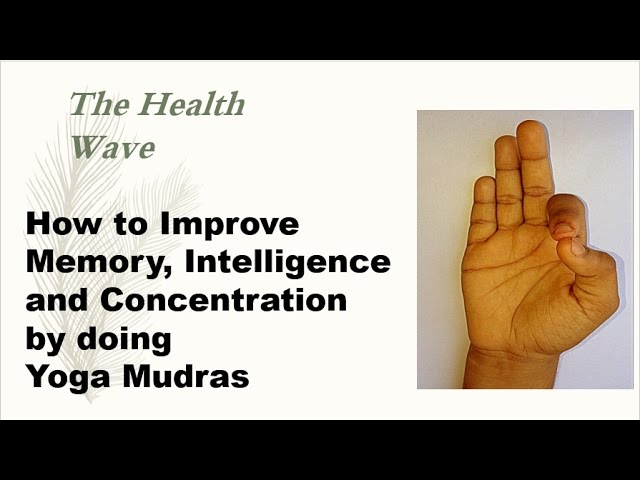 How to Improve Memory, Intelligence and Concentration by doing Yoga Mudras