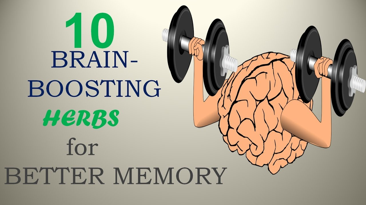 10 Brain-Boosting Herbs for Better Memory – Nature Care 2017