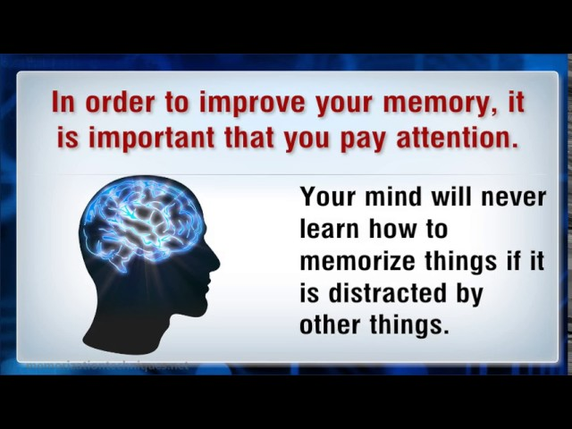 Improve Memory Loss – Enhance Memory Power