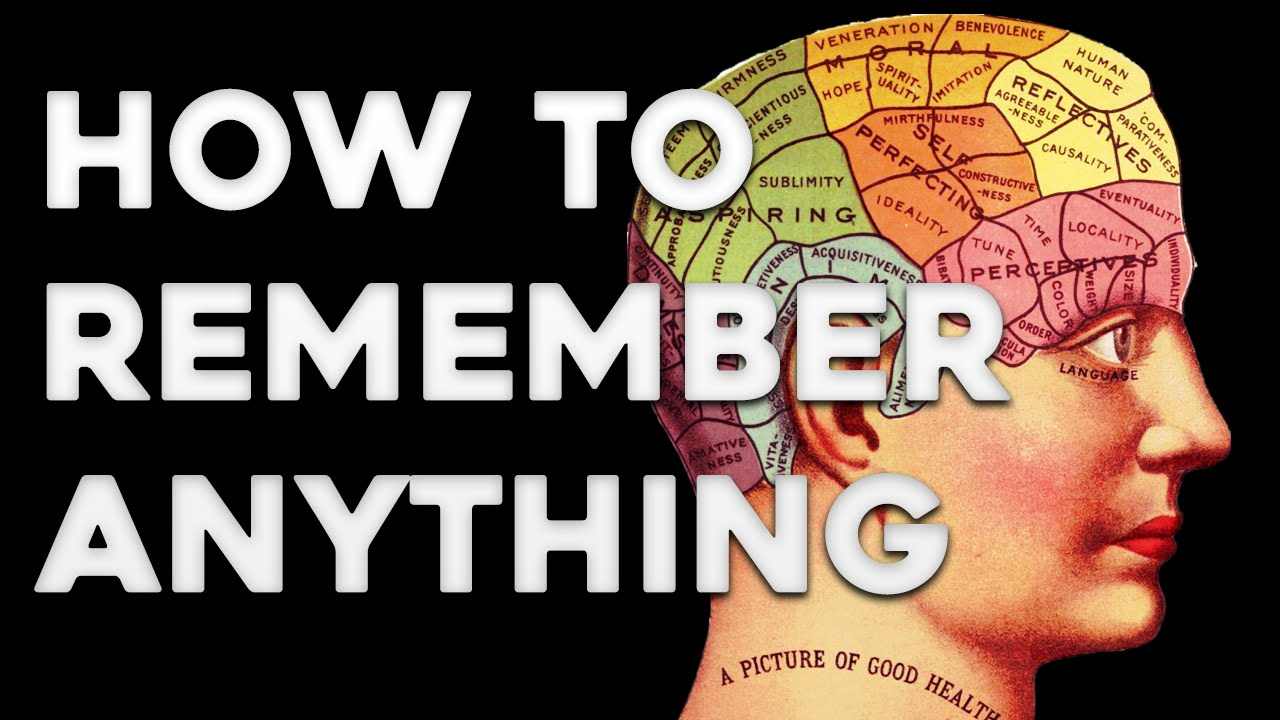 Mind Palace Technique – How to Improve Your Memory Skills