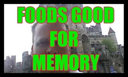 Foods that help your memory
