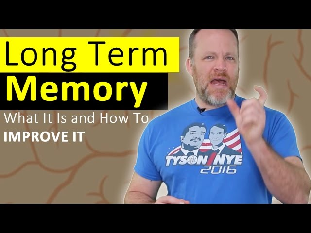 Long Term Memory – How To Improve it and What It Is!