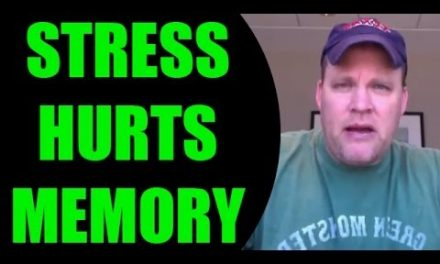 Ron White Memory Guy | Memory Training Tip | Stress and Memory