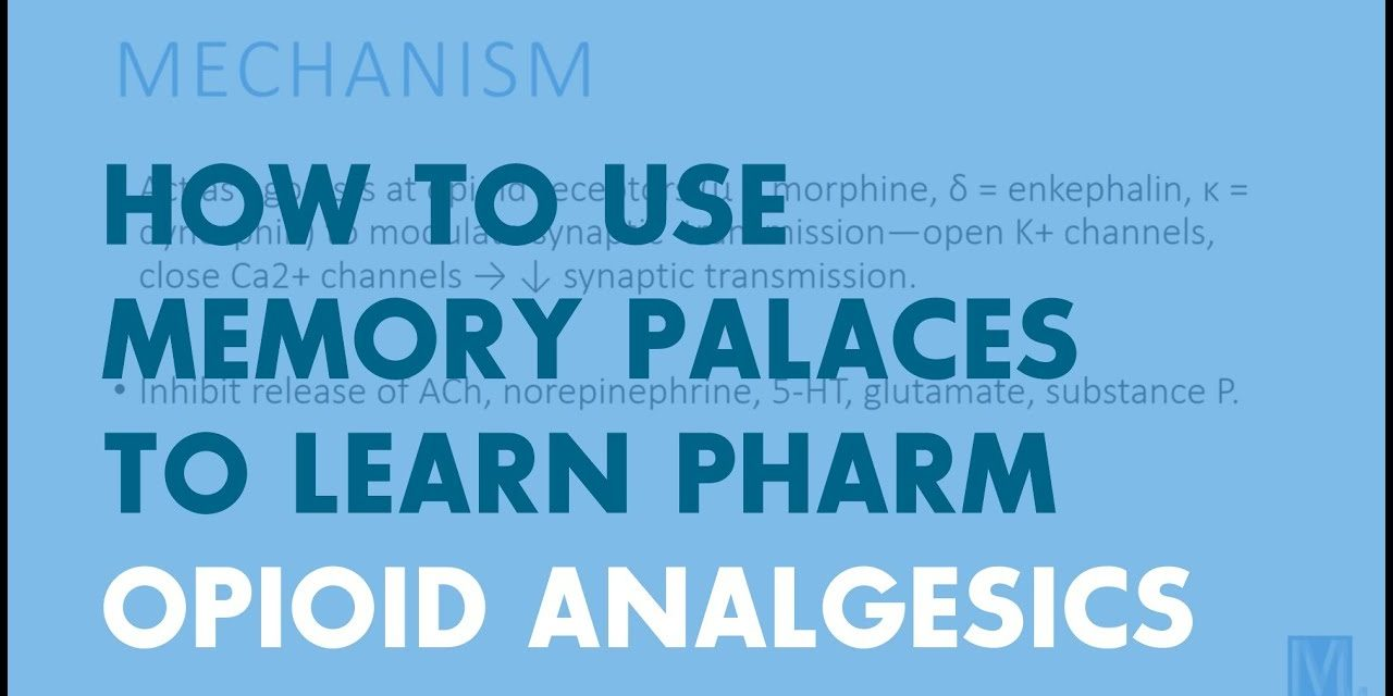 How to Use Memory Palaces in Medical School | Pharmacology: Opioid Analgesics