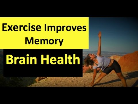 Why Exercise Is Good For Your Brain Health