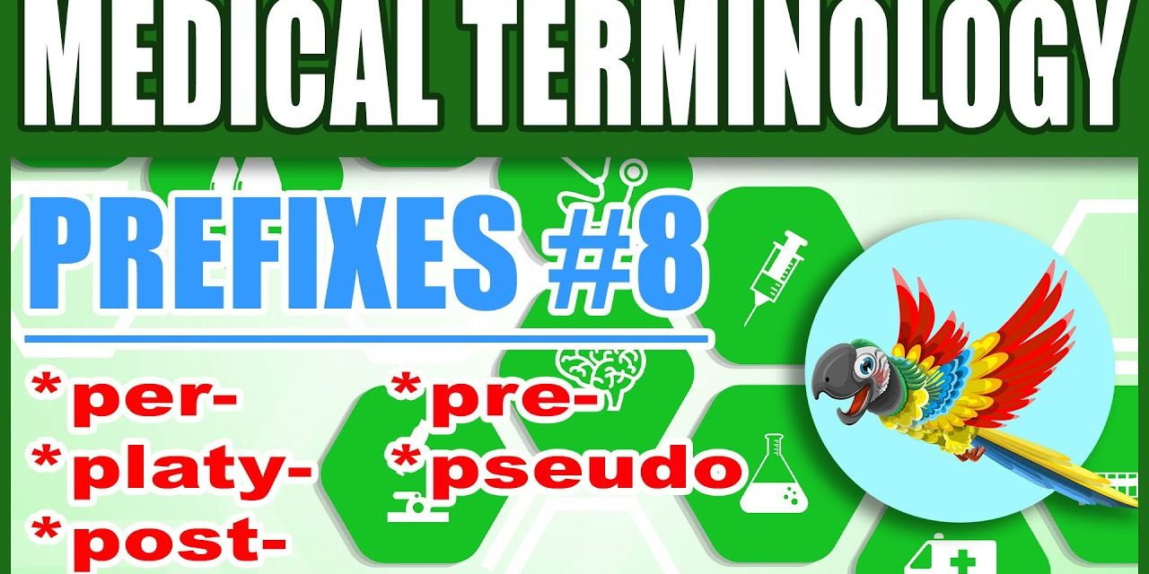 Medical Terminology Prefixes 8 | Memorize Premed Nursing Biology Words per, platy, post, pre, pseudo